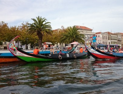 Aveiro Full-Day Tour